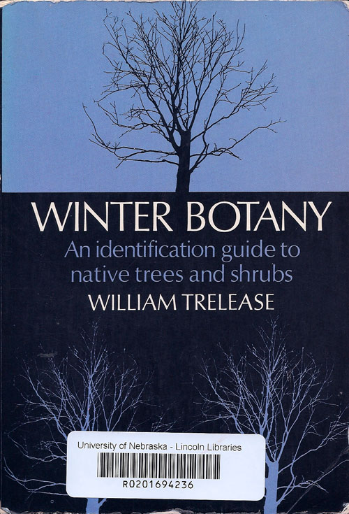 winter botany scan
